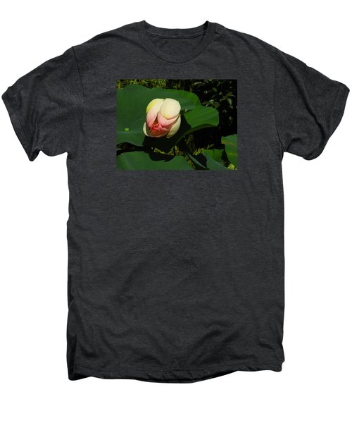 Water Lily Men's Premium T-Shirt