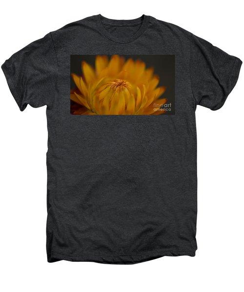 Yellow Strawflower Blossom Close-up Men's Premium T-Shirt