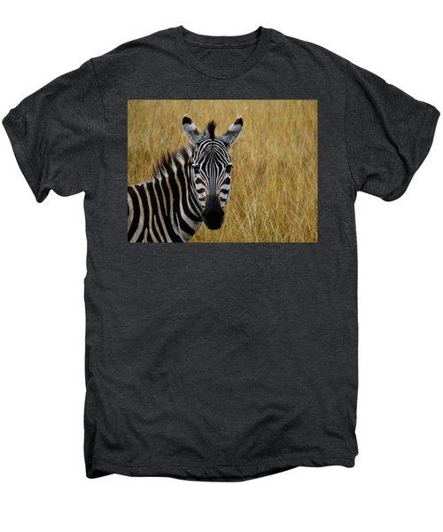 Zebra Half Shot Face On Men's Premium T-Shirt