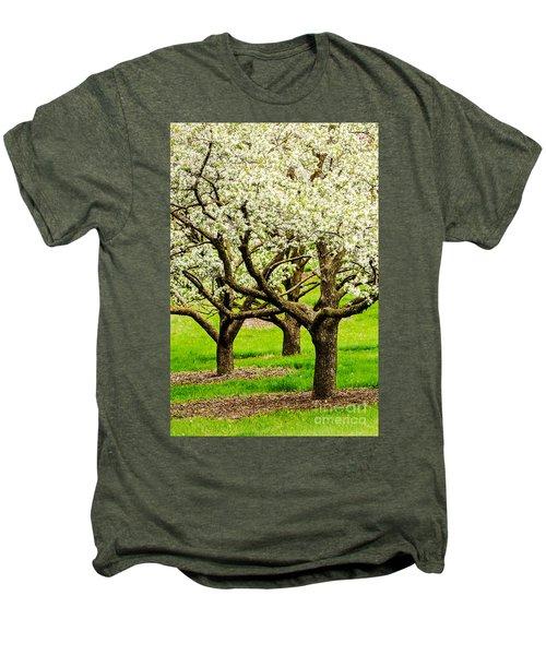 Apple Blossoms Men's Premium T-Shirt