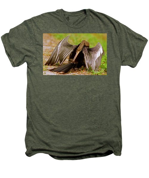 Anhinga Anhinga Anhinga Preening Men's Premium T-Shirt by Millard H. Sharp