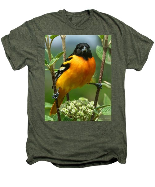 Baltimore Oriole Men's Premium T-Shirt