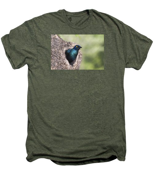 Greater Blue-eared Glossy-starling Men's Premium T-Shirt by Andrew Schoeman