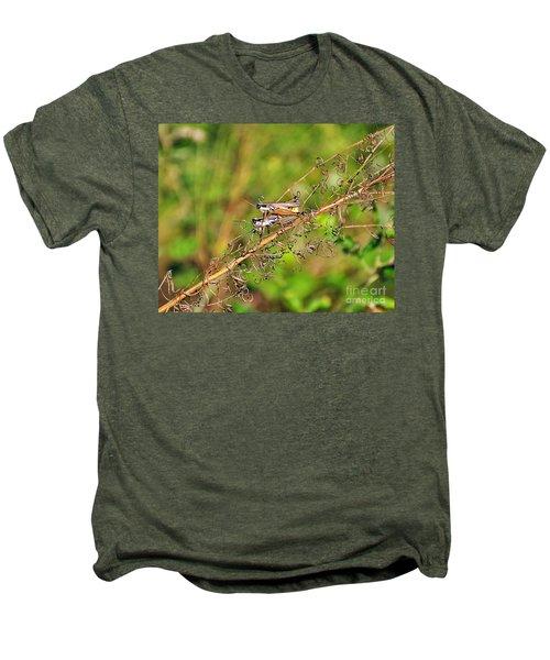 Gregarious Grasshoppers Men's Premium T-Shirt