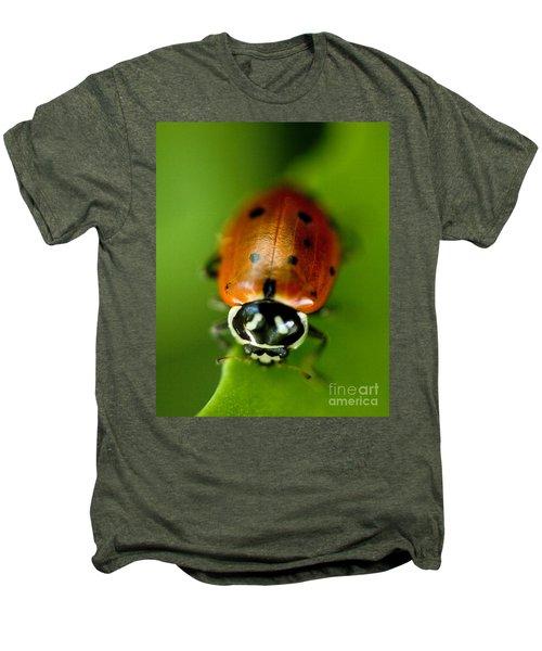 Ladybug On Leaf Men's Premium T-Shirt