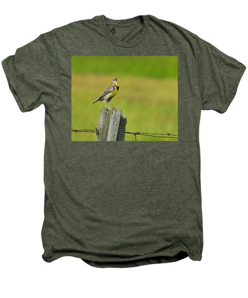 Western Meadowlark Men's Premium T-Shirt by Tony Beck