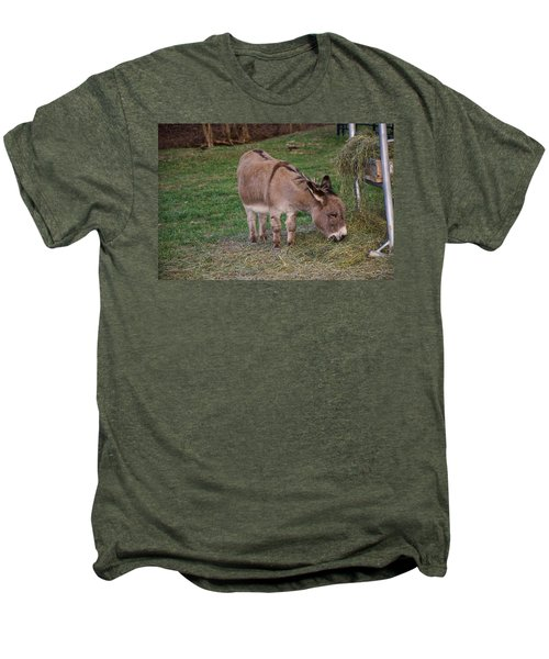 Young Donkey Eating Men's Premium T-Shirt