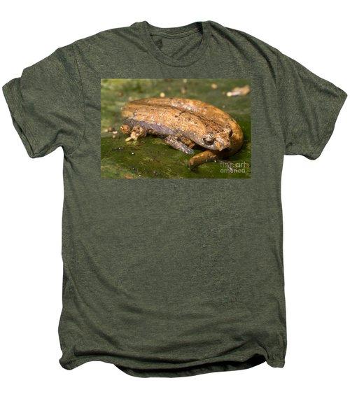 Bolitoglossine Salamander Men's Premium T-Shirt by Dante Fenolio