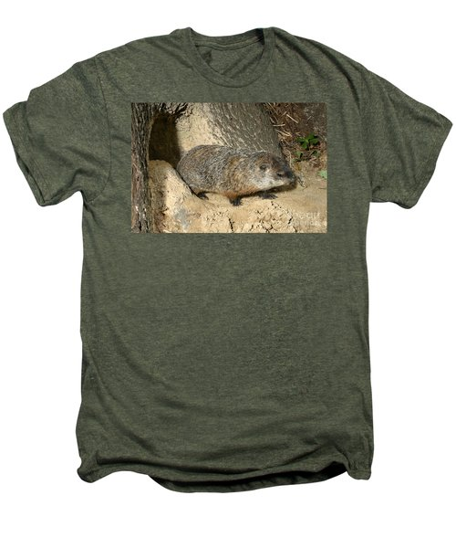 Woodchuck Men's Premium T-Shirt by Ted Kinsman