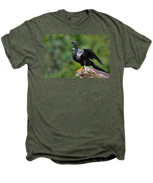 Anhinga Anhinga Anhinga Perching Men's Premium T-Shirt by Panoramic Images