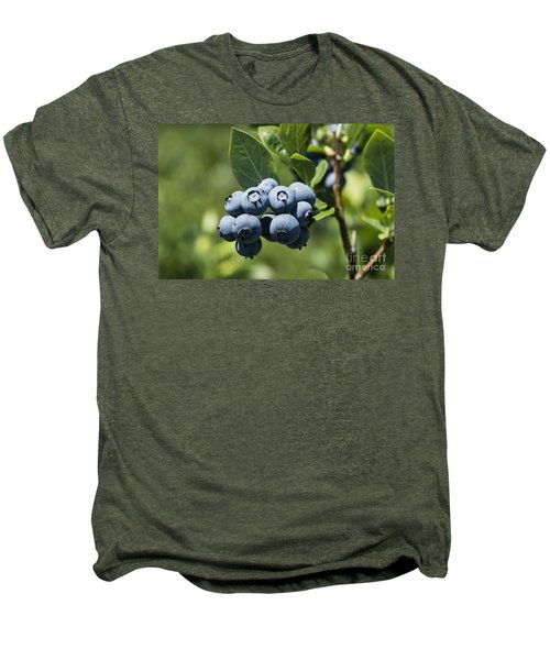 Blueberry Bush Men's Premium T-Shirt