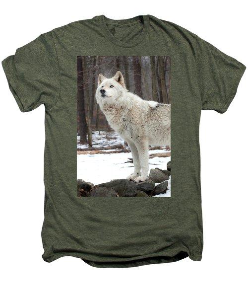 A Wolfs Modeling Pose Men's Premium T-Shirt