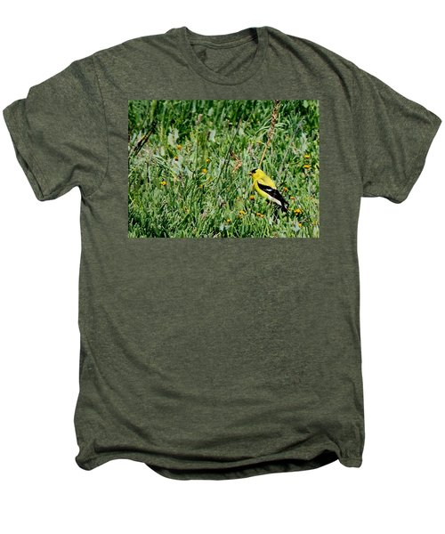 American Goldfinch  Men's Premium T-Shirt