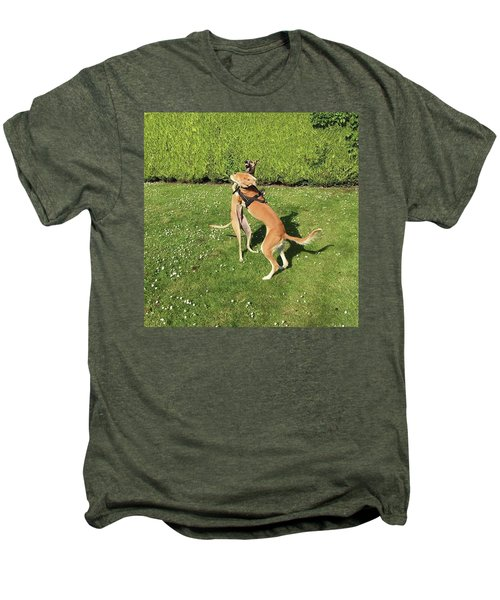 Ava The Saluki And Finly The Lurcher Men's Premium T-Shirt