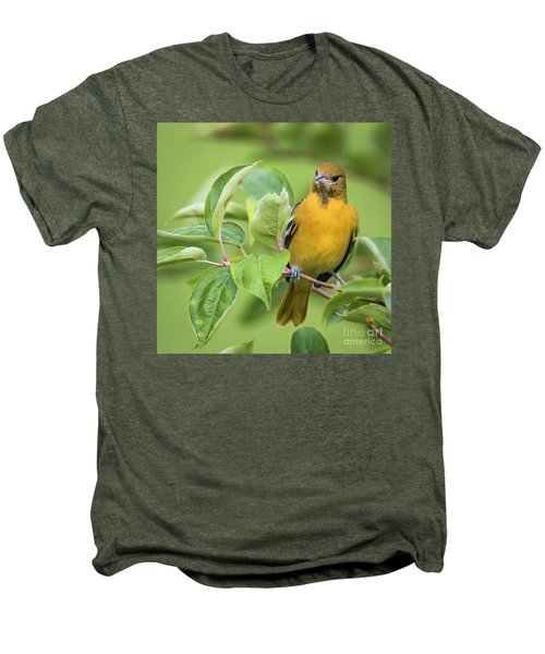 Baltimore Oriole Closeup Men's Premium T-Shirt