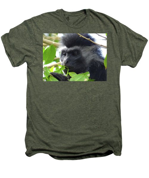 Colobus Monkey Eating Leaves In A Tree Close Up Men's Premium T-Shirt