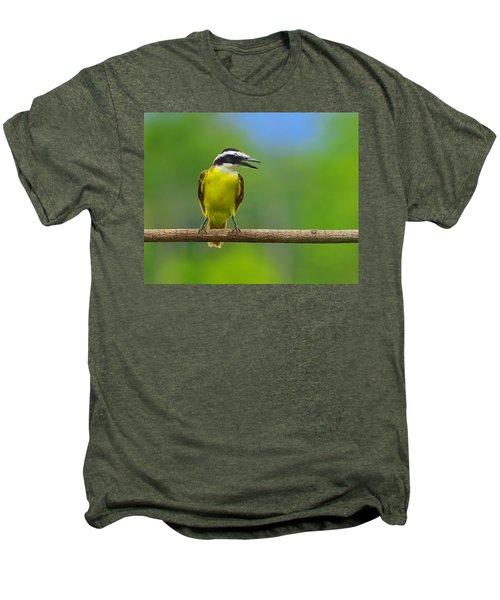 Great Kiskadee Men's Premium T-Shirt by Tony Beck