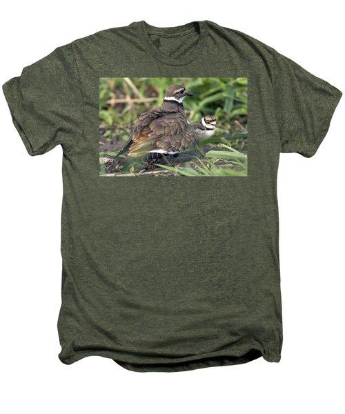 Killdeer With Chicks Men's Premium T-Shirt by Craig Strand