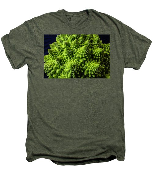 Romanesco Broccoli Men's Premium T-Shirt by Garry Gay
