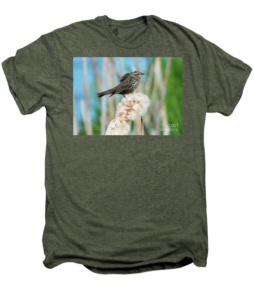 Ruffled Feathers Men's Premium T-Shirt by Mike Dawson