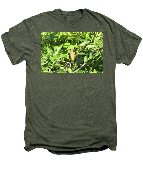 Sitting Pretty Men's Premium T-Shirt by David Stasiak