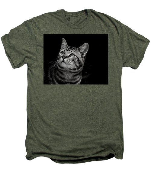Thoughtful Tabby Men's Premium T-Shirt