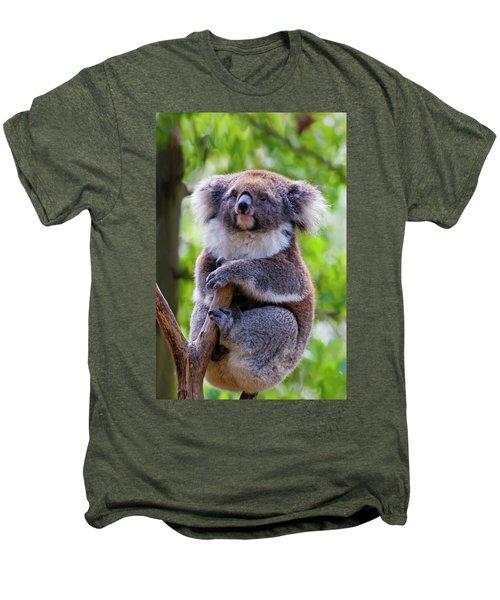 Treetop Koala Men's Premium T-Shirt