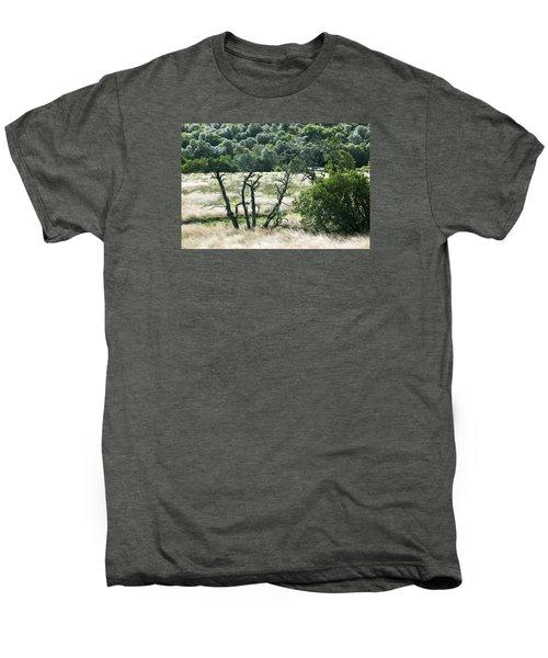 Autumn And Grass In Isle Of Skye, Uk Men's Premium T-Shirt
