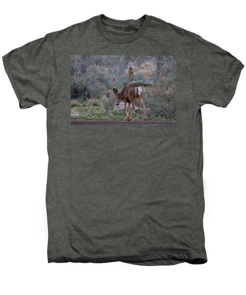 Back Into The Woods - 2 Men's Premium T-Shirt