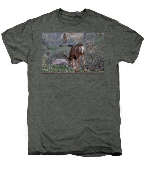 Back Into The Woods Men's Premium T-Shirt