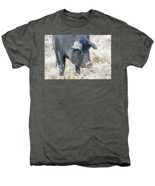 Men's Premium T-Shirt featuring the photograph Black Pig Close-up by James BO Insogna