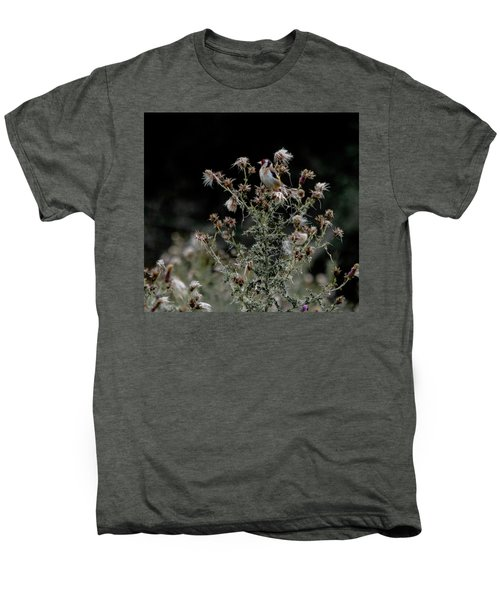 Goldfinch Sitting On A Thistle Men's Premium T-Shirt