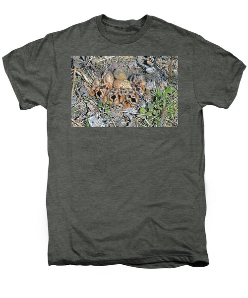 Just Hatched American Woodcock Chicks Men's Premium T-Shirt by Asbed Iskedjian