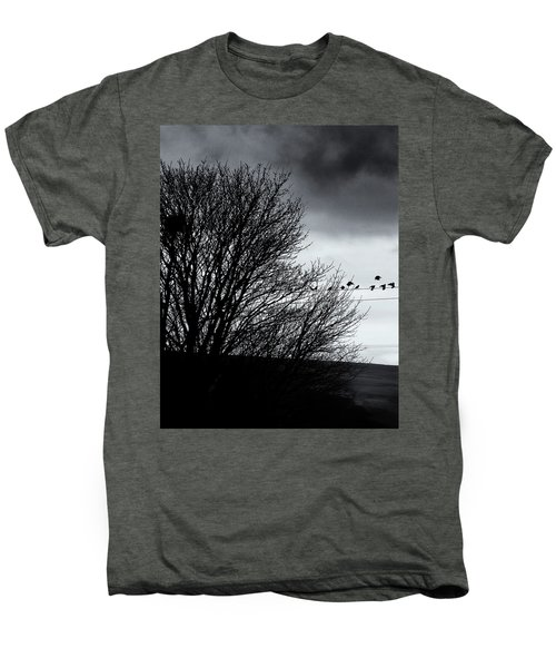 Starlings Roost Men's Premium T-Shirt by Philip Openshaw