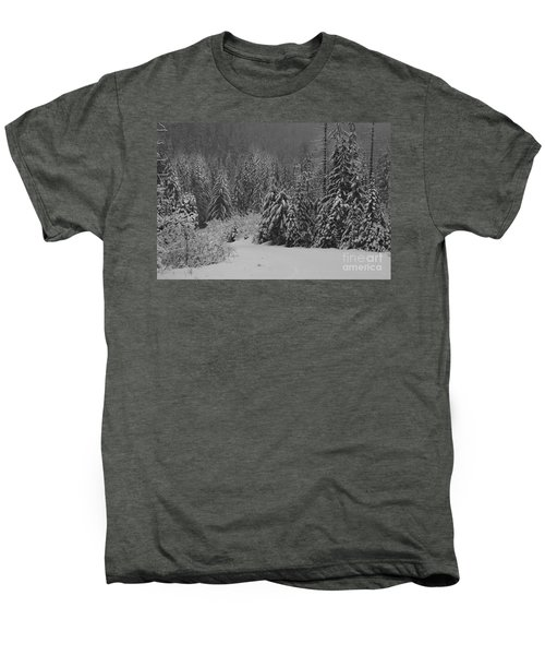 Winter Fairy Tale Men's Premium T-Shirt