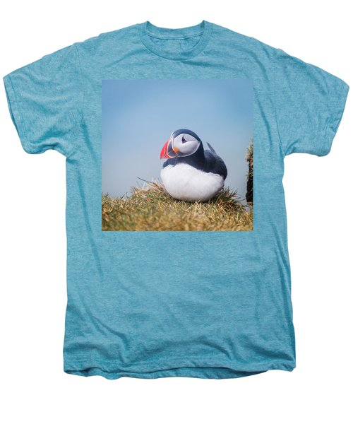 Atlantic Puffin Fratercula Arctica Men's Premium T-Shirt