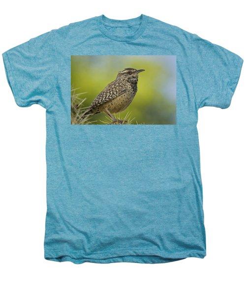 Cactus Wren  Men's Premium T-Shirt by Saija  Lehtonen