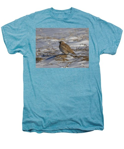 Winter Bird Men's Premium T-Shirt by Jeff Swan