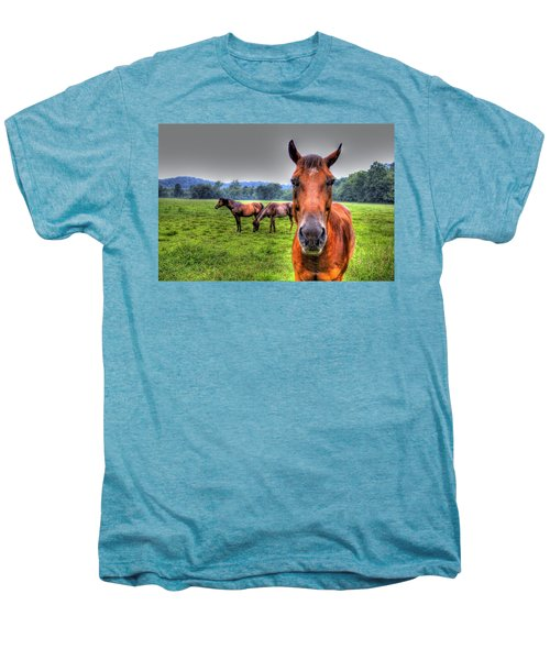 A Starring Horse Men's Premium T-Shirt