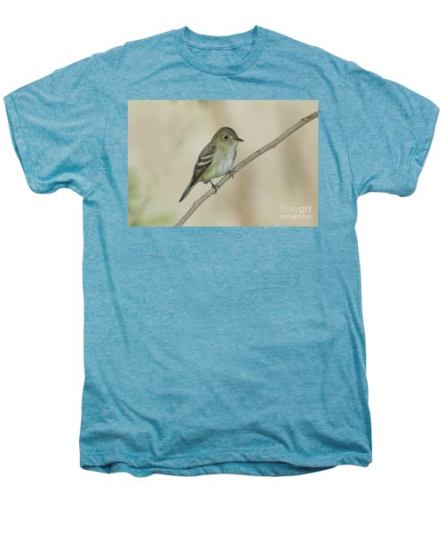 Acadian Flycatcher Men's Premium T-Shirt by Anthony Mercieca