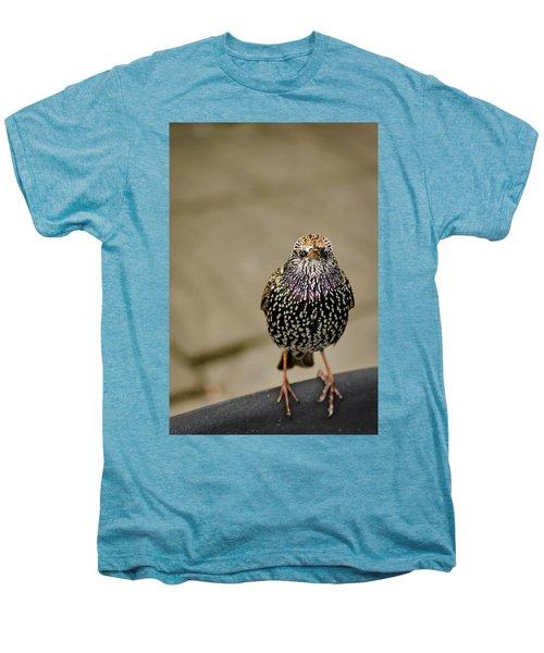 Angry Bird Men's Premium T-Shirt by Heather Applegate