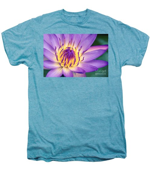 Ao Lani Heavenly Light Men's Premium T-Shirt by Sharon Mau