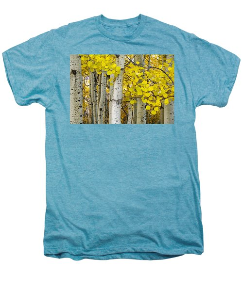 Aspens At Autumn Men's Premium T-Shirt