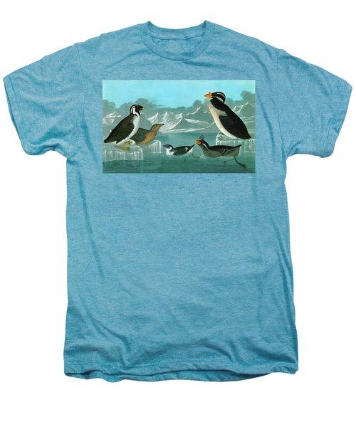 Audubon Auks Men's Premium T-Shirt