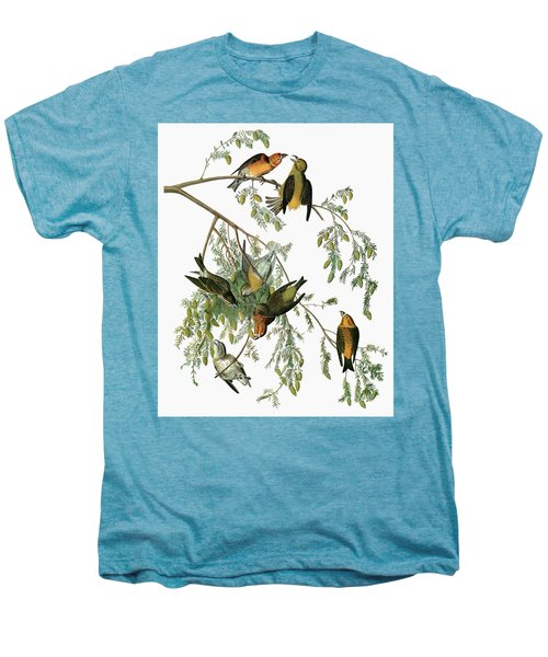 Audubon Crossbill Men's Premium T-Shirt