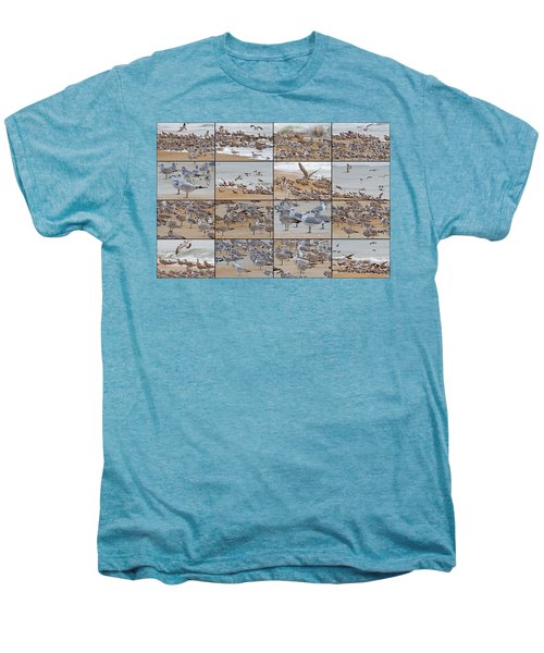 Birds Of Many Feathers Men's Premium T-Shirt by Betsy Knapp