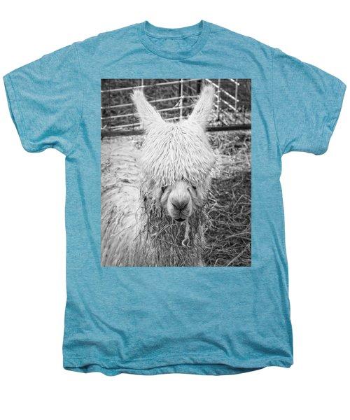 Black And White Alpaca Photograph Men's Premium T-Shirt by Keith Webber Jr