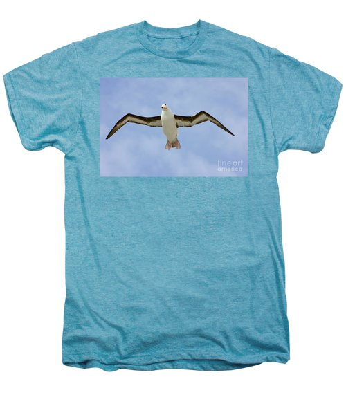 Black-browed Albatross Flying Men's Premium T-Shirt by Yva Momatiuk John Eastcott