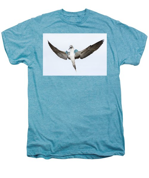 Blue-footed Booby Landing Galapagos Men's Premium T-Shirt by Tui De Roy