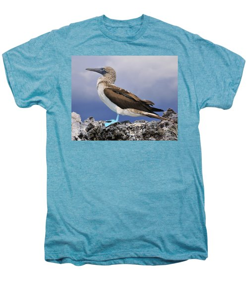 Blue-footed Booby Men's Premium T-Shirt by Tony Beck